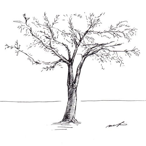 151007_wood01