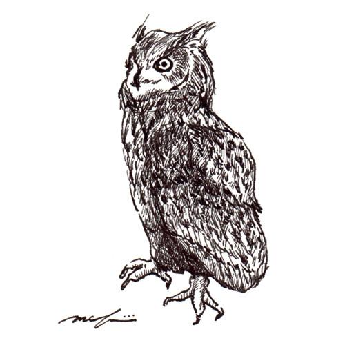 151119_owl01