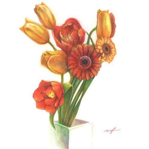 100214_gerbera_tulip_sq01