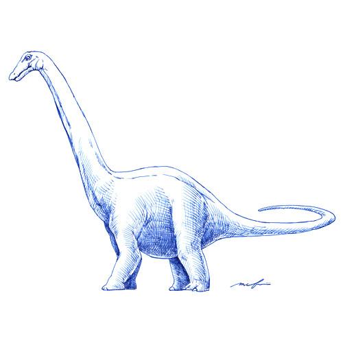 160316_apatosaurus01