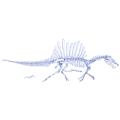 160425_spinosaurus01