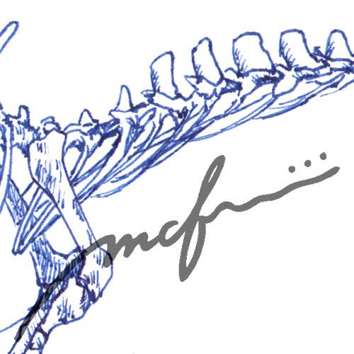 160426_spinosaurus02