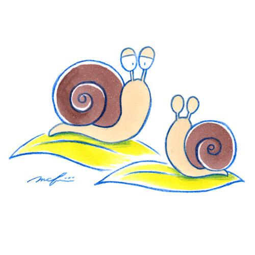 160618_snail01