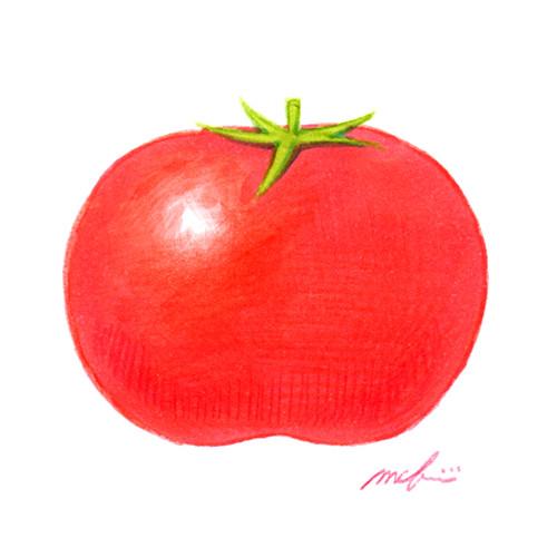 160831_tomato01