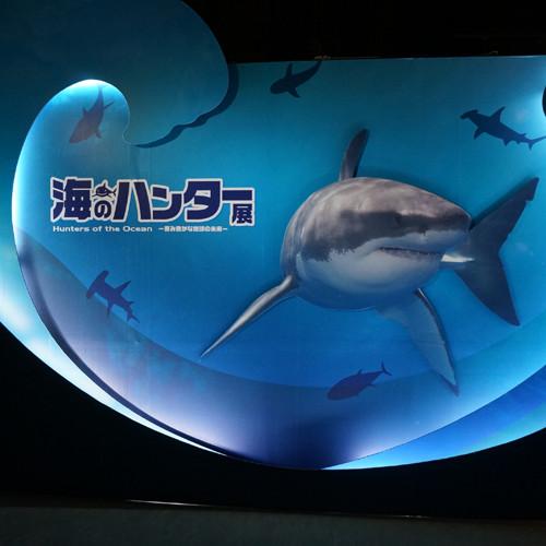 161002_hunters_of_the_ocean01