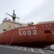 南極観測船「しらせ5002」